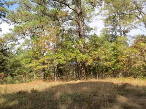 2.1 Acre Lot In Tishomingo County : Iuka : Tishomingo County : Mississippi