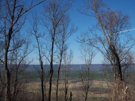 Canoe Creek Mountain : Ashville : Saint Clair County : Alabama