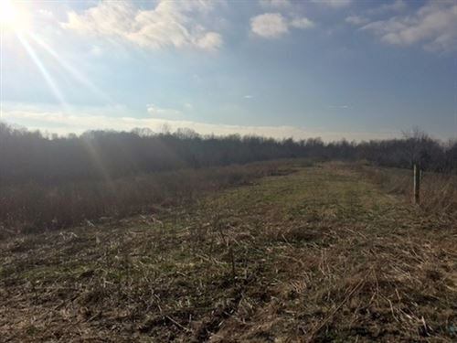 9 Acres In Green County, Ky : Hardyville : Green County : Kentucky