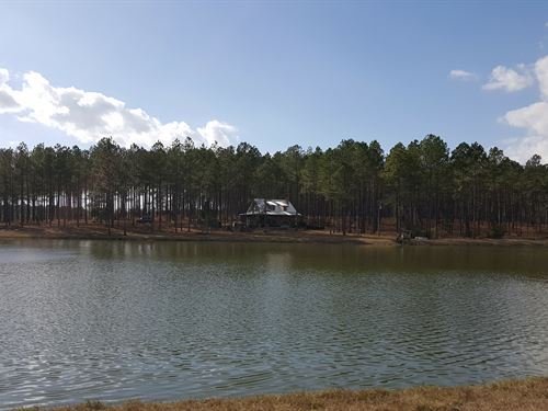 Gorgeous Timber, Lake, And Cabin : Rochelle : Wilcox County : Georgia