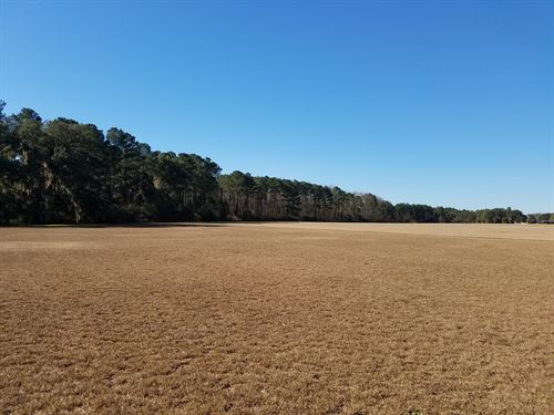 Pristine Irrigated Farm Land : Lakeland : Lanier County : Georgia