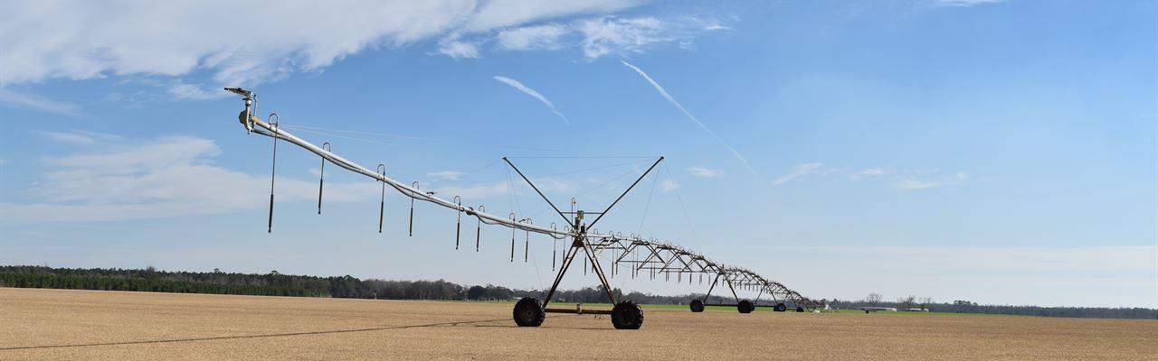 Pristine Irrigated Farm Land