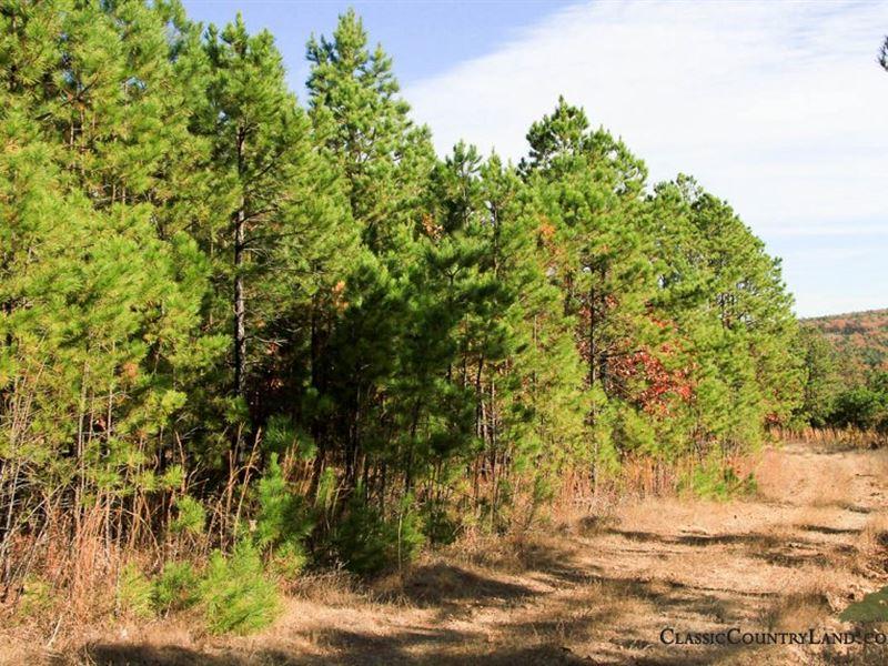Stone Creek, Latimer County : Wiburton : Latimer County : Oklahoma