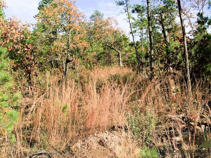 Stone Creek, Latimer County 5 : Wilburton : Latimer County : Oklahoma