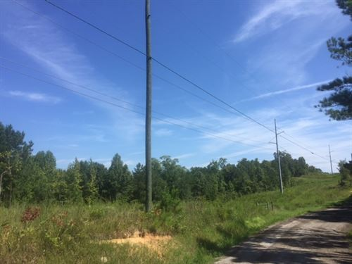 25.03 +/- Acres, Tract 2, Paulding : Dallas : Paulding County : Georgia