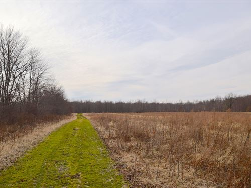 Tr 391 - 38 Acres : Sullivan : Ashland County : Ohio