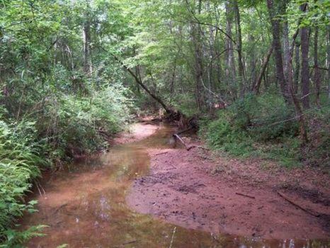81 Acres - Timber/Hardwoods/Creek : Wedowee : Randolph County : Alabama