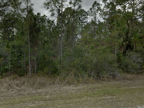 Oversized Lot For Sale : Lehigh Acres : Lee County : Florida