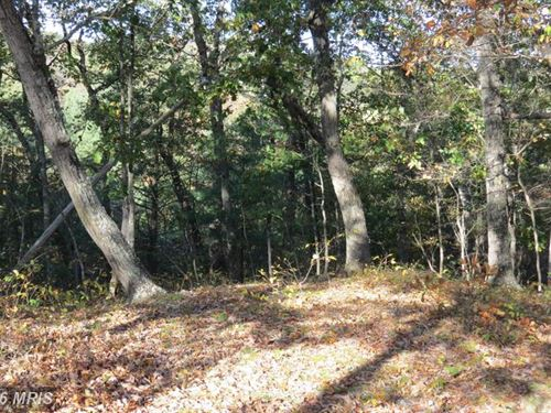 Nice Wooded Lot : Delray : Hampshire County : West Virginia