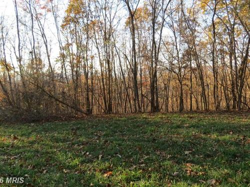 Nice Wooded Lot : Romney : Hampshire County : West Virginia