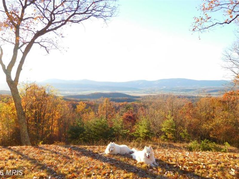 Panoramic Views : Moorefield : Hardy County : West Virginia