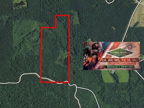 90 Ac - Timber & Hunting Tract : West Monroe : Ouachita Parish : Louisiana