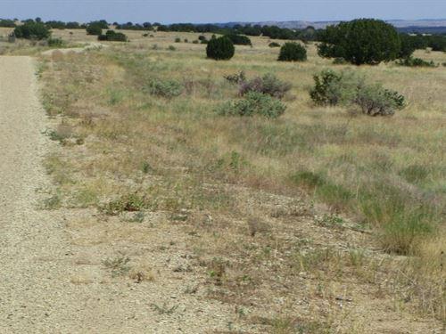 Looking For A 40+ Acre Parcel : Thatcher Pinon Canyon : Las Animas County : Colorado