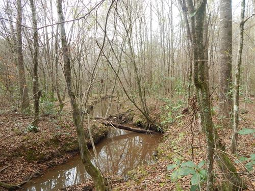 57 Acres On Magee Hill Rd : Tylertown : Walthall County : Mississippi