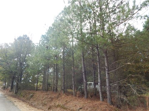 17 Acres On Magee Hill Rd : Tylertown : Walthall County : Mississippi