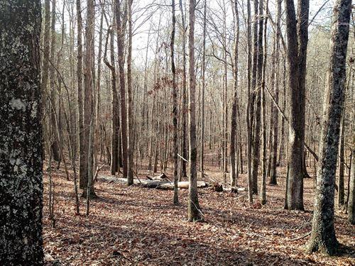 Stone Road - 14.93 Acres : Mcdonough : Henry County : Georgia