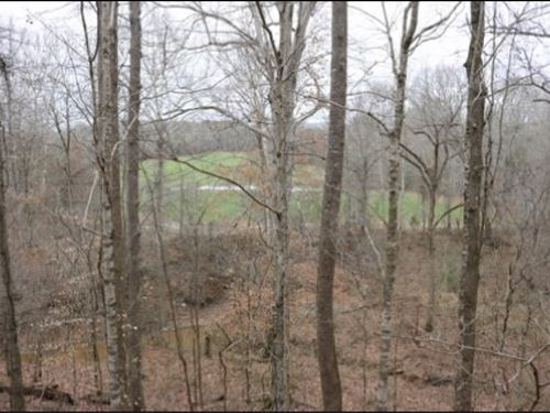 80 Acres In Holmes County : Lexington : Holmes County : Mississippi