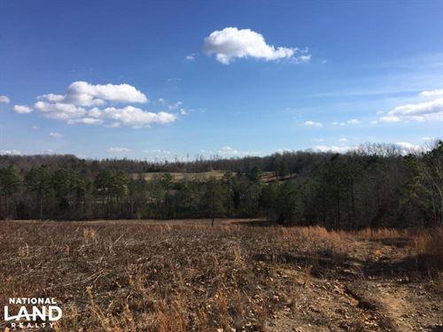 Philadelphia Cedar Fork Creek Farml : Philadelphia : Loudon County : Tennessee
