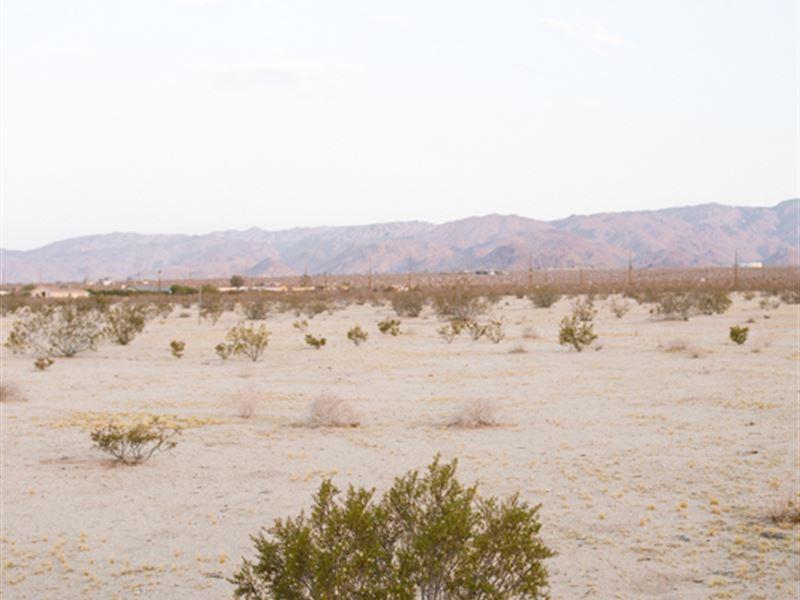 Wanna Get Away - 5 Acres With Water : Landers : San Bernardino County : California