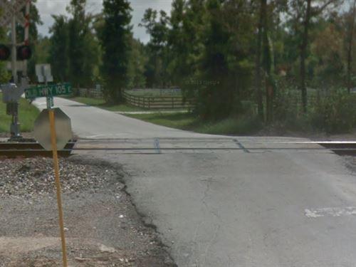 285 Acres Faulkner Road : Splendora : Montgomery County : Texas