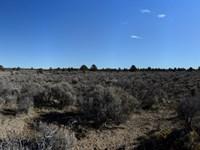 18.26 Acres In Silver Lake Oregon : Silver Lake : Lake County : Oregon