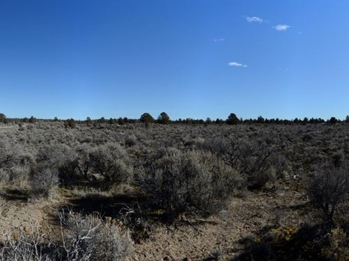 18.26 Acres In Silver Lake Oregon : Silver Lake : Lake County : Oregon