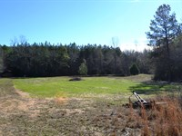 Oak Springs Property : Autaugaville : Autauga County : Alabama