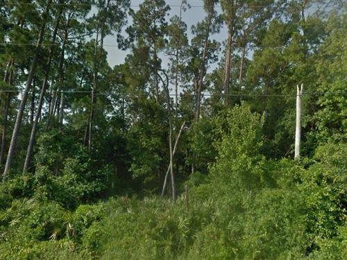 Osceola County, Florida $45,000 : Saint Cloud : Osceola County : Florida