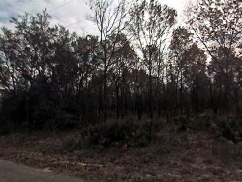 Marion County, Florida $15,000 : Ocklawaha : Marion County : Florida