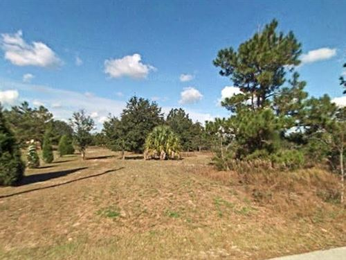 Marion County, Florida $17,500 : Dunnellon : Marion County : Florida