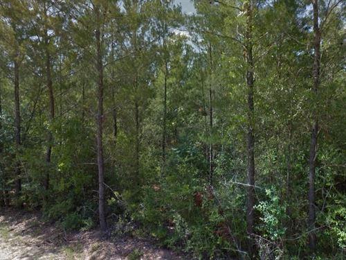 Okaloosa County, Florida $28,000 : Holt : Okaloosa County : Florida