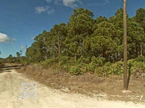 Lee County, Florida $14,500 : Lehigh Acres : Lee County : Florida