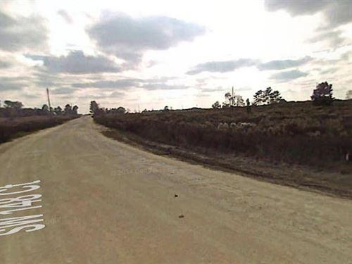 Marion County, Florida $24,000 : Ocala : Marion County : Florida