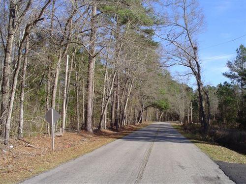 Coolers Dairy Tract : Walterboro : Colleton County : South Carolina