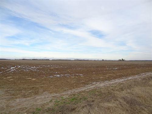 351 Ml Acre Farm : Mc Crory : Woodruff County : Arkansas