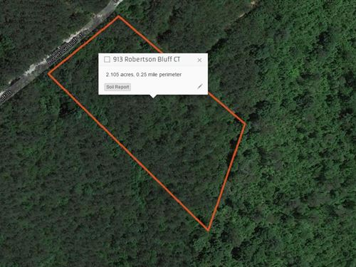 Private Wooded Lot Ready For Your D : Marietta : Greenville County : South Carolina