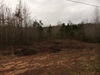 34.9 Ac On Hwy 154 : Newnan : Coweta County : Georgia