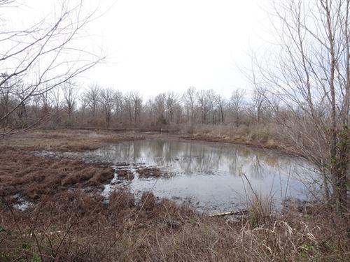61 Acre Fish Pond/Duck Property : Jacksonville : Lonoke County : Arkansas