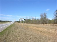 19.502 Acres Commercial Property : Waynesboro : Burke County : Georgia