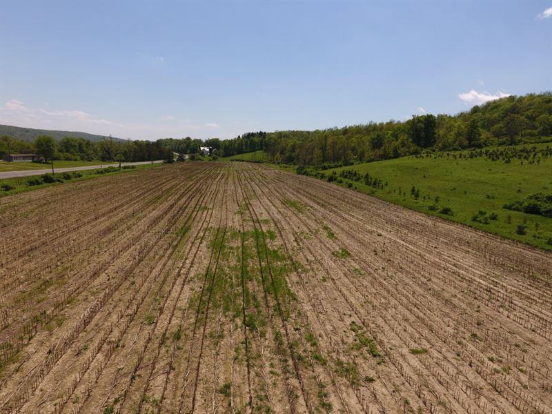 121 Acres Farmland In Berkshire Ny : Berkshire : Tioga County : New York