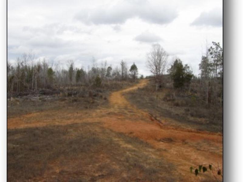 341 Acres In Webster County In Eupo : Eupora : Webster County : Mississippi