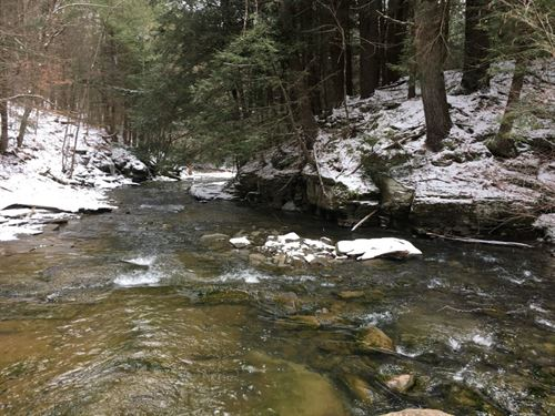 9 Acre Windsor Ny Near State Forest : Windsor : Broome County : New York