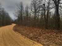 19 +/- Wooded Acres : Marmaduke : Greene County : Arkansas