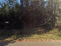.17 Acre In Ocala, Fl : Ocala : Marion County : Florida