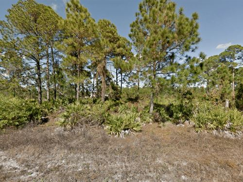 Vacant Residential Lot : Lehigh Acres : Lee County : Florida