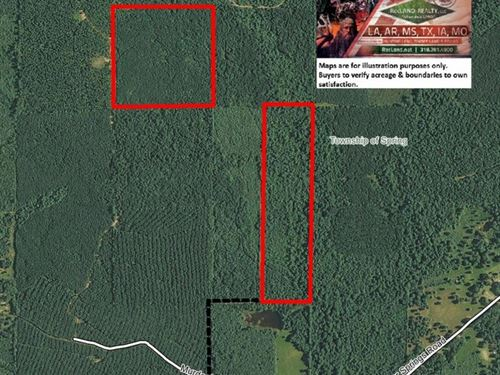 80 Ac - Timberland & Hunting : Pine Bluff : Jefferson County : Arkansas