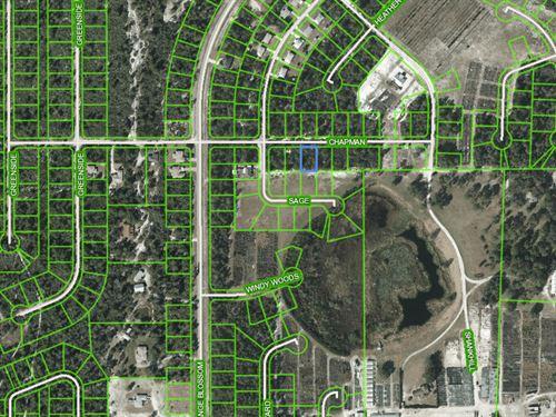 10,000 Sq.Ft Vacant Lot In Sebring : Sebring : Highlands County : Florida