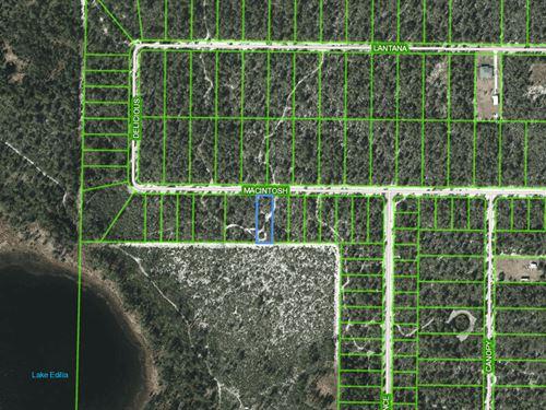 Oversized Lot For Sale In Sebring : Sebring : Highlands County : Florida