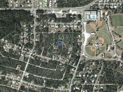 Vacant Lot For Sale In Sebring, Fl : Sebring : Highlands County : Florida