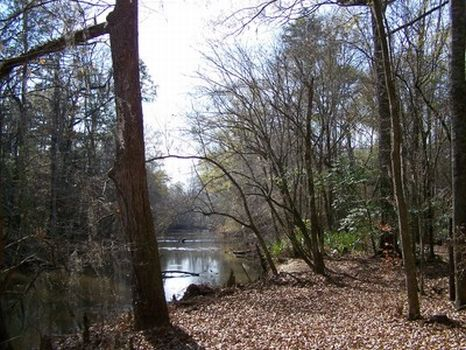 760 Acres - Hunting or Development : Glenwood : Crenshaw County : Alabama